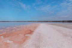 Salty coastline of Lake Crossbie Stock Photos