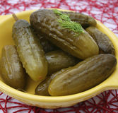 Salty cucumbers Royalty Free Stock Photography