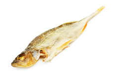 Salty Dried Fish Royalty Free Stock Images
