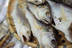 Salty fish Royalty Free Stock Photography