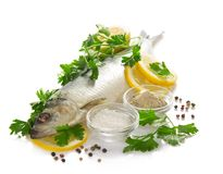 Salty fish with a lemon and parsley Stock Image