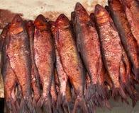 Salty fish. At market display Royalty Free Stock Images