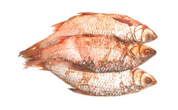 Salty red fish Royalty Free Stock Image