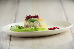 Salty fish salad on white plate Stock Images