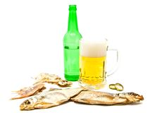 Salty fishes and light beer Royalty Free Stock Images