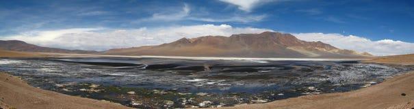Salty Lagoon. San Pedro de Atacama at Chile Royalty Free Stock Images