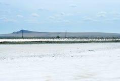 Salty lake Royalty Free Stock Photos