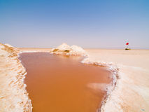 Salty lake. In Tunesia desert Royalty Free Stock Photo