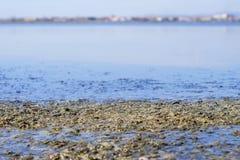 Salty lake mud Stock Image