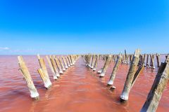 The salty lake with pink water and the beach from salt. Old logs pier on Lake Sasyk in the Crimea.  Royalty Free Stock Photography