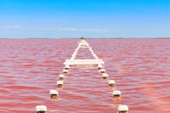 The salty lake with pink water and the beach from salt. Old logs pier on Lake Sasyk in the Crimea.  Stock Photography