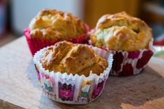 Salty muffins with cheese! Yummy! stock photos