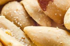 Salty peanuts Stock Image