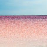 Salty pink lake Royalty Free Stock Photo
