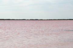 Salty pink lake Royalty Free Stock Image