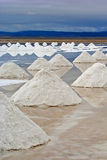 Salty pyramids. Salt pyramids at the Salar of Uyuni, bolivia Royalty Free Stock Photography