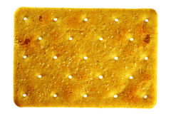 Salty rectangular cracker Stock Image