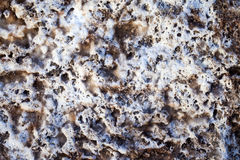Salty Rocks Surface Texture Background Royalty Free Stock Photography