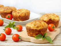 Salty snack cakes muffins with cheese, tomatoes and basil Royalty Free Stock Photo