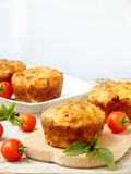 Salty snack cakes muffins with cheese, tomatoes and basil Royalty Free Stock Photography