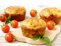 Salty snack cakes muffins with cheese, tomatoes and basil Stock Photography