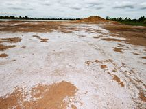 Salty soil. Saline soil that is not suitable for crop cultivation Stock Image