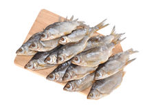 Salty vobla on a board. The fish a salty vobla lays on a wooden board Stock Image