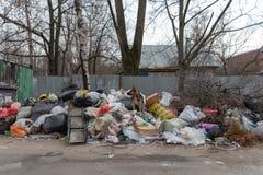Saltykovka Moskvaregion, Ryssland - April 20 2019: Hund på en hög av avskräde i plastpåsar royaltyfri foto
