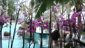 Salud y relajación basadas en las aguas termales metrajes