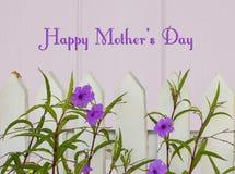 Saludo alegre y feliz del día de madres con la valla de estacas y las flores púrpuras en fondo de madera purpúreo claro con las l Imagen de archivo libre de regalías