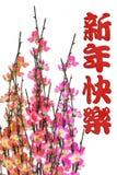 Saludo chino del Año Nuevo y flor del ciruelo Foto de archivo