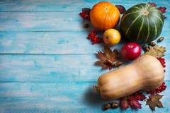 Saludo de la acción de gracias con las calabazas y las manzanas en b de madera azul Foto de archivo libre de regalías