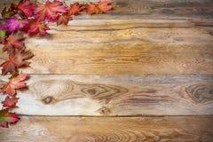 Saludo de la acción de gracias con las hojas de arce de la caída en b de madera rústico Foto de archivo libre de regalías