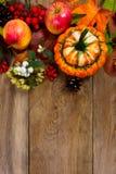 Saludo de la acción de gracias con la calabaza decorativa, bayas blancas, co Imagen de archivo libre de regalías