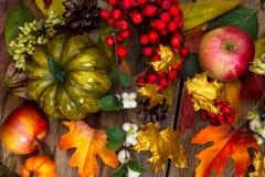 Saludo de la acción de gracias con la calabaza verde, manzanas, serbal, b blanco Fotos de archivo