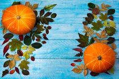 Saludo de la acción de gracias con la calabaza y las hojas de otoño en la madera azul Foto de archivo libre de regalías