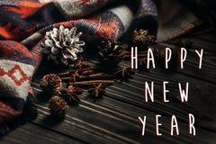 Saludo de la muestra del texto de la Feliz Año Nuevo con invierno u otoño elegante Fotos de archivo libres de regalías