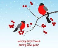Saludo de la Navidad con los pájaros que se sientan en rama stock de ilustración
