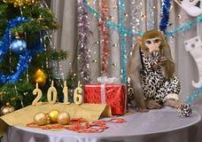Saludo de la tarjeta del Año Nuevo con el mono, números, abeto, decoraciones Imagenes de archivo