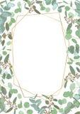 Saludo del aviador festivo, tarjeta del día de fiesta, vector Floral elegante, verdor, colección del semicírculo Ramo de espiral  libre illustration