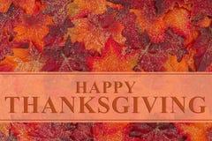 Saludo feliz de la acción de gracias Imagen de archivo libre de regalías