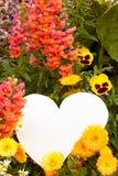 Saludos de la flor del corazón Fotos de archivo libres de regalías