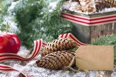 Saludos de la Navidad Imágenes de archivo libres de regalías