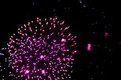Salut, fajerwerki W nocnym niebie Pirotechniczny przedstawienie na wakacje Wybuch wiele petardy obrazy royalty free