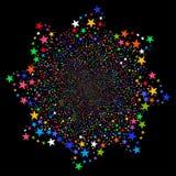 Salut gwiazdy kwiat zdjęcie royalty free