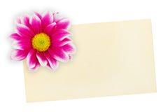 Salutation de la carte de papier et de la fleur Photos libres de droits