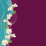 Salutation de la carte florale avec des fleurs de cerise Photographie stock libre de droits