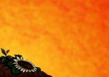 Salutations 3 (2015) de fleur Photo libre de droits