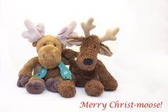 Salutations de Noël :  Joyeux Christ-orignaux ! Images stock