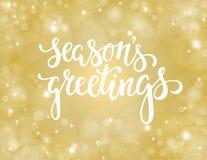 Salutations tirées par la main du ` s de saison de lettrage conception pour des cartes de voeux et des invitations de vacances Images libres de droits